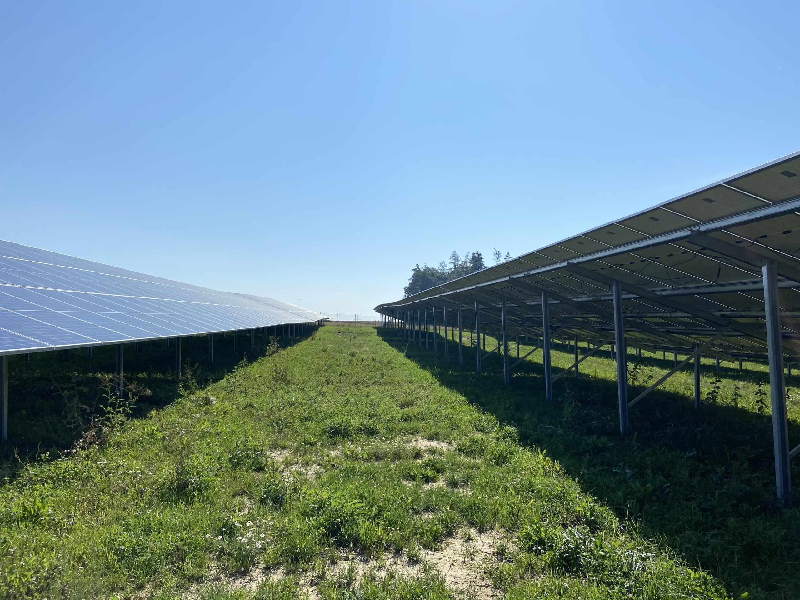 SL Rack Freiflächensystem - 3V | Standort: Bayern, Deutschland | Leistung: 1,8 MWp